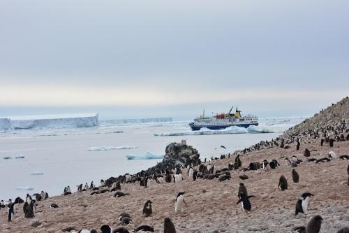 160313_南極_6
