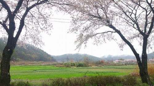 160410_busan_village_1